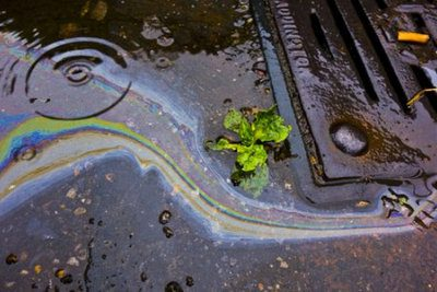Oil petrol rainbow leak running down a drain