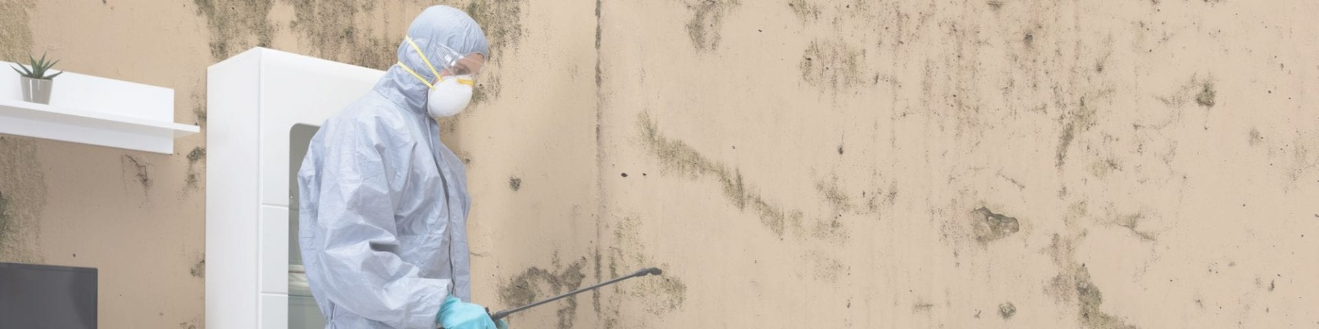 Controlling Mold Growth in Buildings: Prevention and Control Strategies