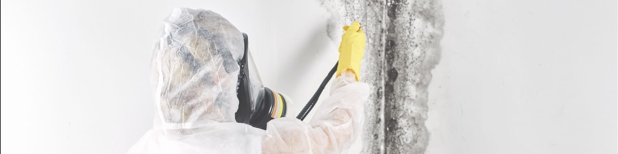 Cleaning Mold - Mold Control Information Series – Article #5