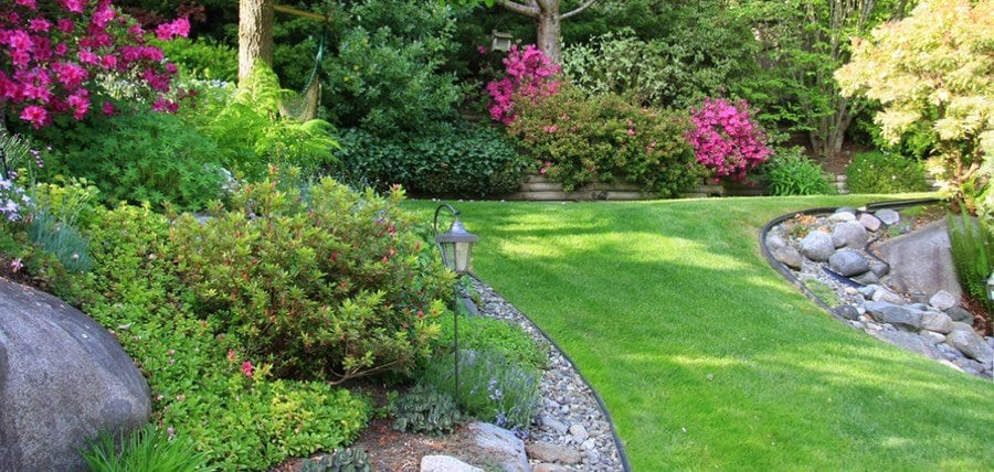 How to Test Soil pH to get a Greener Lawn and Beautiful Garden