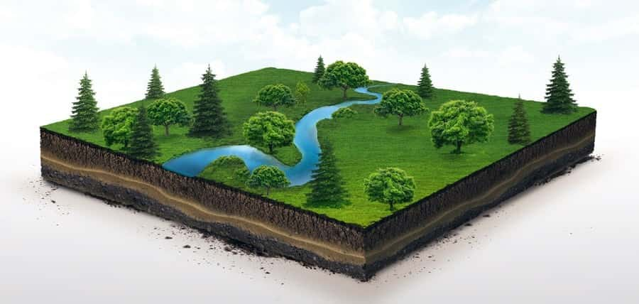 The Layers and Importance of Soil