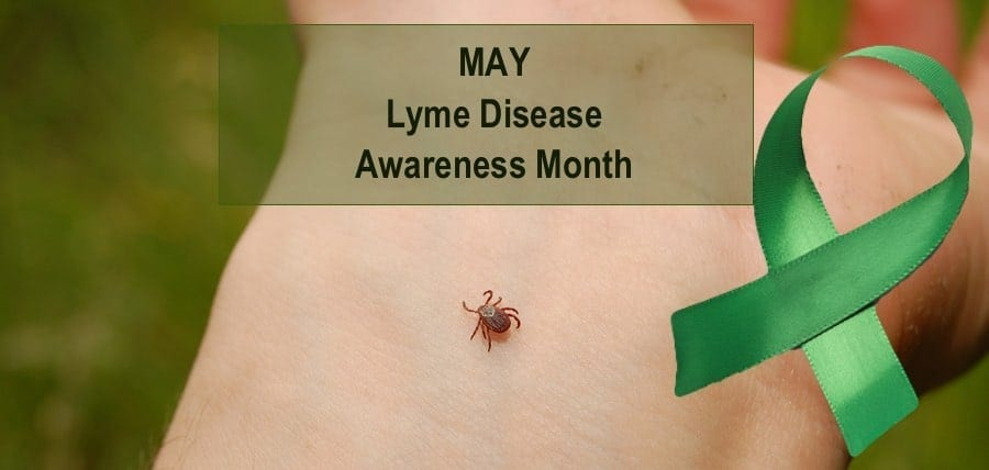 How Can I Help? Lyme Disease Awareness Month 1