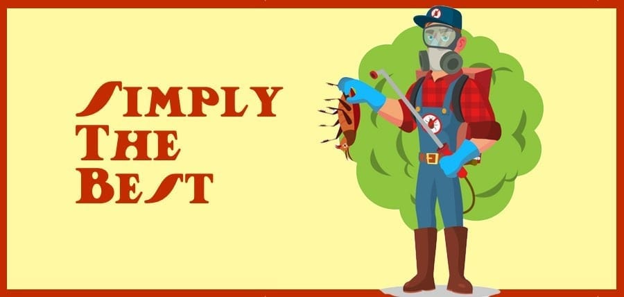 Best Pest Control Service in Northern NJ
