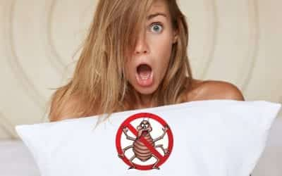 Precautions To Take To Avoid Bed Bugs While Traveling