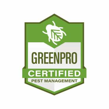 Commercial Pest Control 4