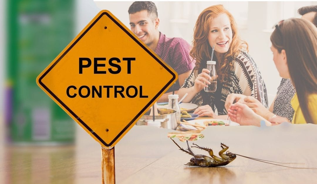 how to prevent a pest infestation in your restaurant
