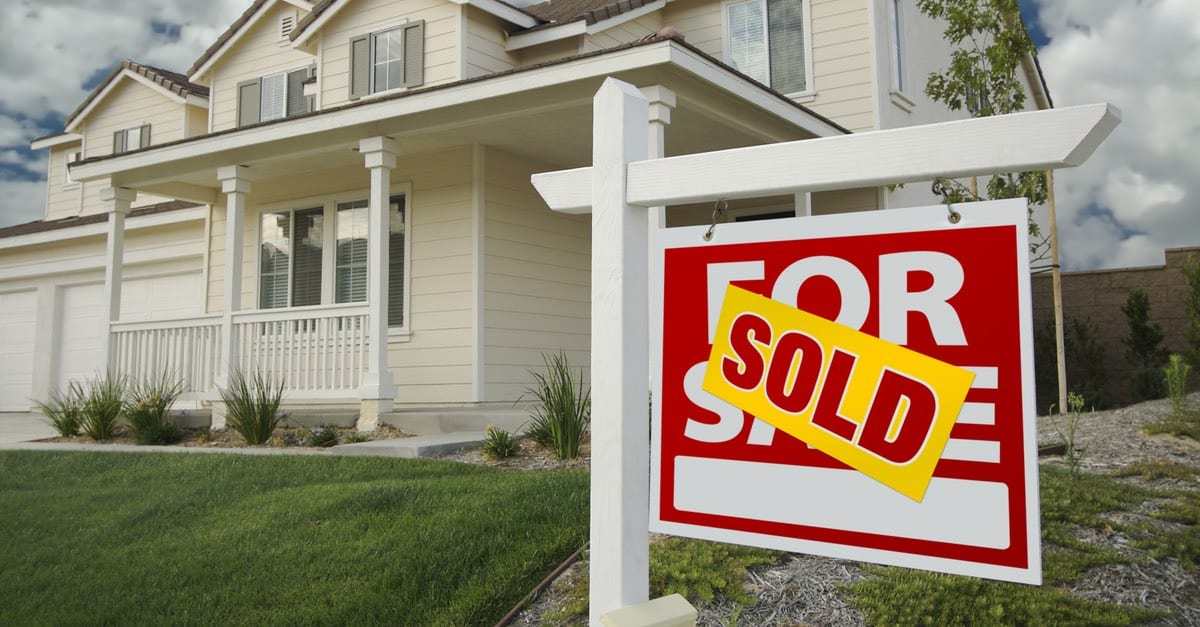 SELLING YOUR HOME? 5 REASONS WHY YOU SHOULD GET A PEST INSPECTION