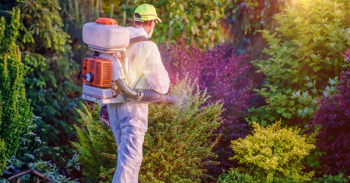 5 REASONS: BEST PEST CONTROL COMPANY IN SUSSEX COUNTY