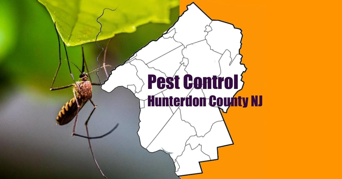 Hunterdon County Pest Control NJ
