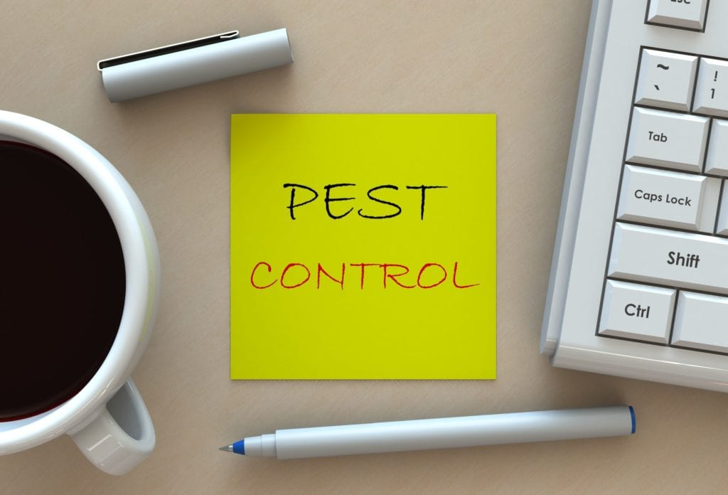 Warren County Nj Pest Control And Wildlife Removal