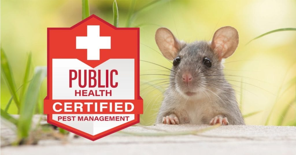 1St To Earn Public Health Rodent Certification Nationwide