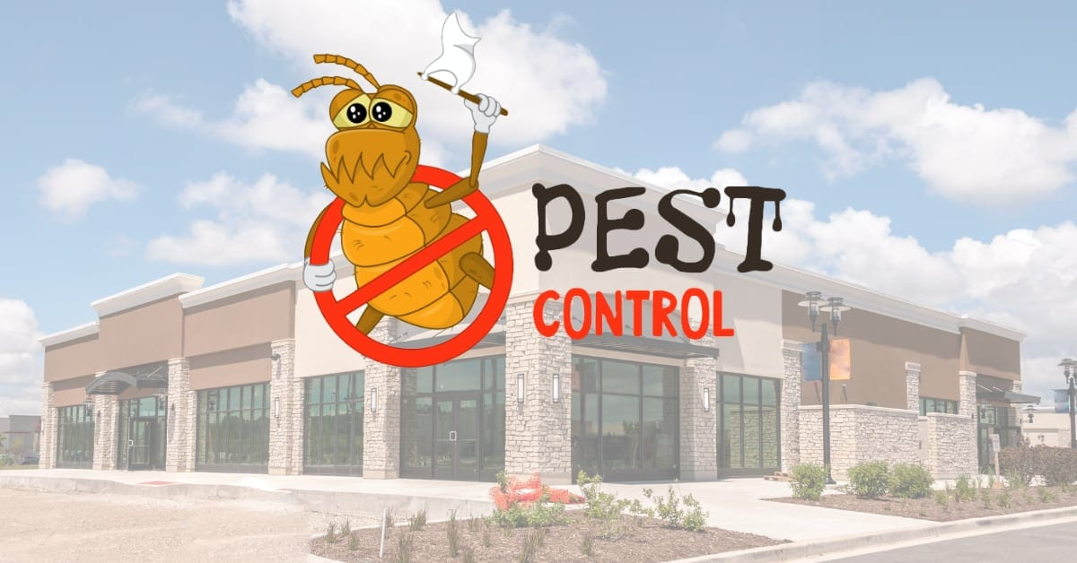 Commercial Business Exterminators, 5 Factors to Consider when Hiring