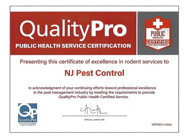Residential Pest Control 2